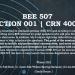 BEE Seminar 507